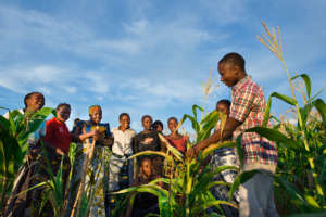 LEAD farmer members in Tanzania.