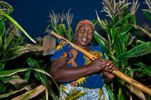 Sophia, a rural corn farmer in Tanzania.