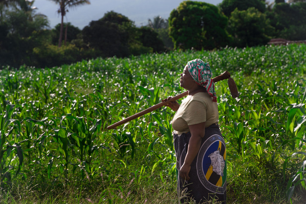 A corn farmer in the LEAD program in Tanzania.