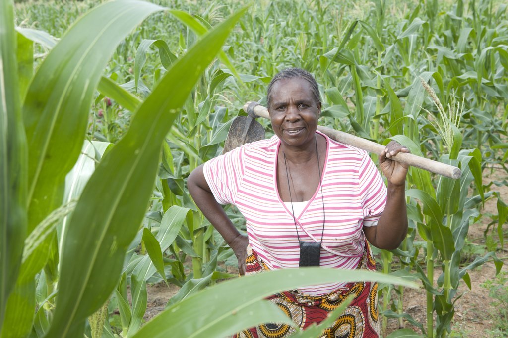 Catalyzing agricultural innovation in Tanzania