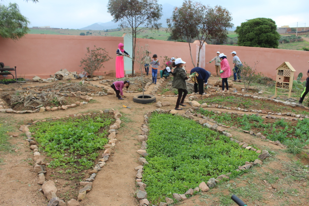 Water School - Environmental Education in Morocco