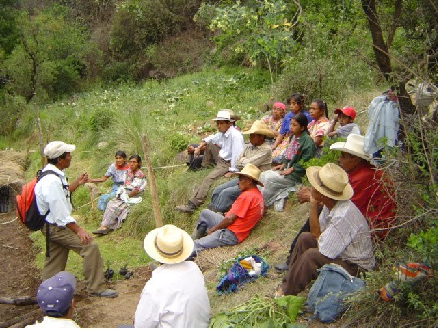 Sustainable Agriculture in Guatemala