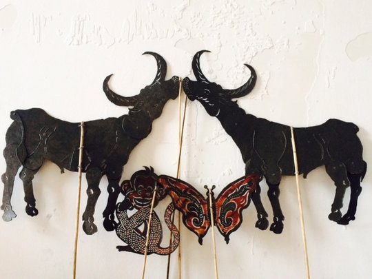 Buffalos, monkey and butterfly