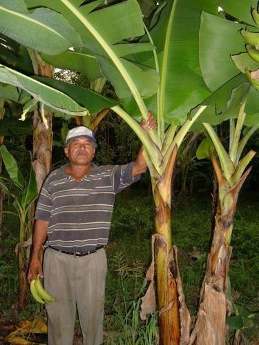 Water Well Need - Norwich, Nicaragua