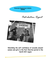 Postelection_violence_report.pdf (PDF)