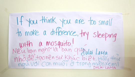 our quote on the wall, teaching at blue dragon