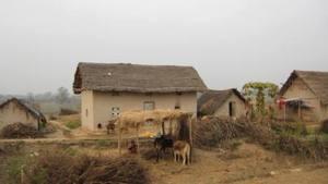 Sushila's home