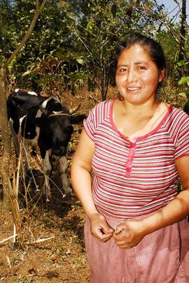 Patrociña and her cow.