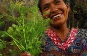 Help Guatemalan Women Achieve Self-Sufficiency