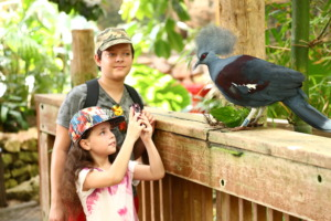 Summer day camps foster a love of nature