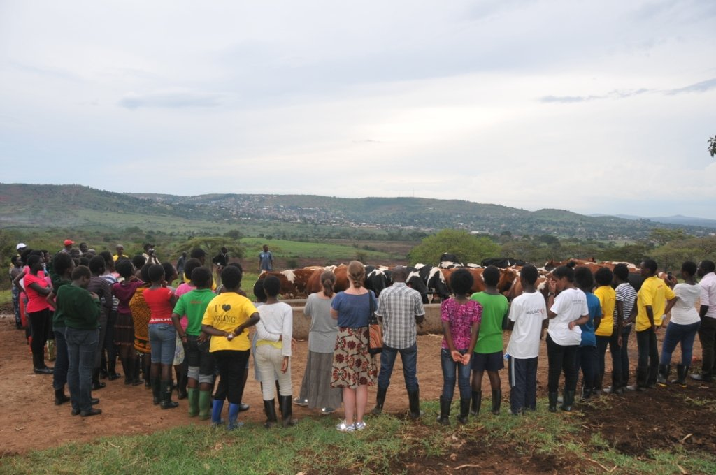 Support students in Uganda create an e-library
