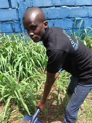 HELP WISDOM TO FARM