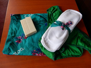 Pad kit-6 reusable pads, soap, knickers, carry bag