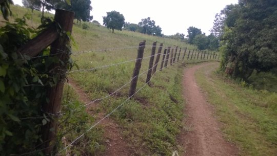 Home ownership land fencing - early July 2016
