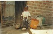 Construct of Greenhouse in 10 schools in Uganda