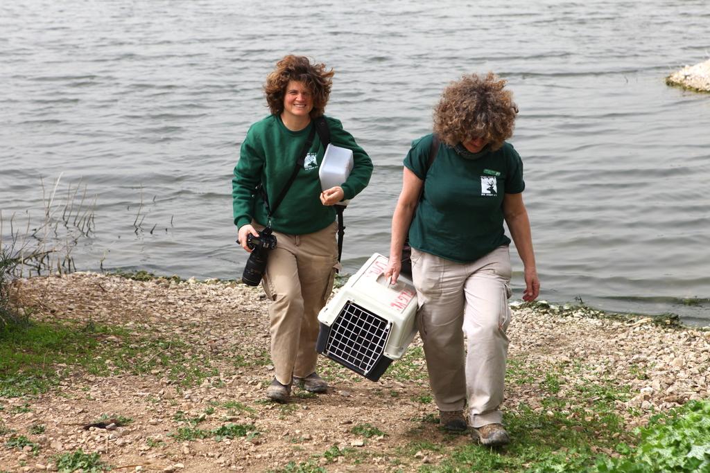 Staff members releasing ducks in the Tsor