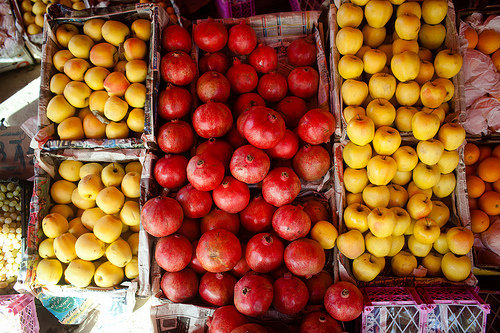 Soon our farmers will sell their fruit in markets.