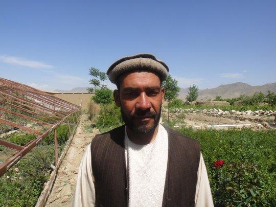 Help 50 Afghan Farmers Plant Fruit Trees