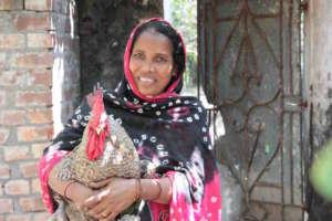Sabera with her prize cockerel
