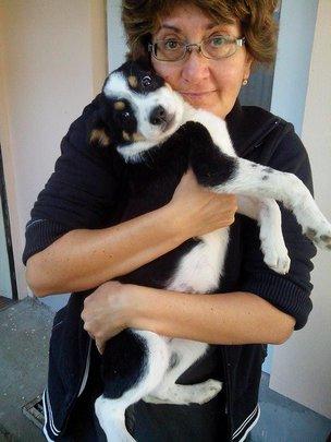 Ranna puppy in Moreni