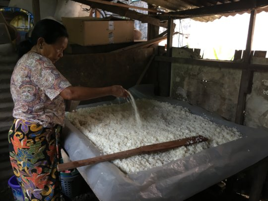 Using the herbal starter to ferment the rice