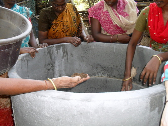 Women Examining the Vermi-compost