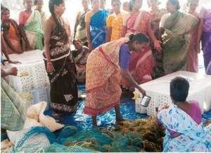 Training on Seaweed cultivation