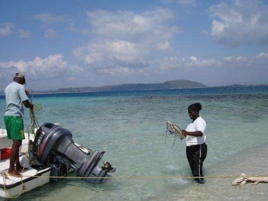 Marsha Mason in the Port Royal Protected Area