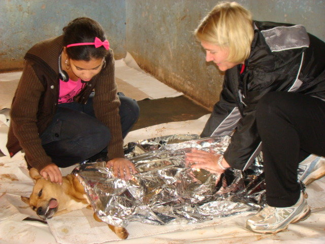 Using Animal Care to Promote Empathy in Children