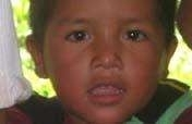 Health & Dignity for 20 Guatemalan Families
