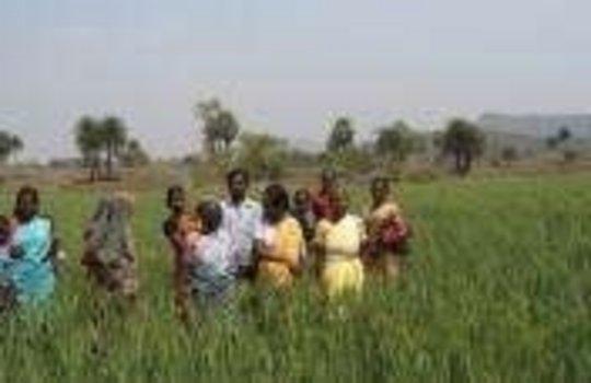 Enhancing skills for 1000 women in Bihar