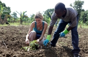 Support Sustainable Agriculture in Haiti