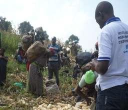 IHUDAF Harvesting Supervision