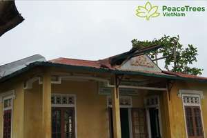 Vinh Hoa Library damaged by windstorm