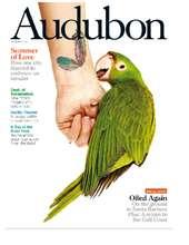 Audubon Magazine (PDF)