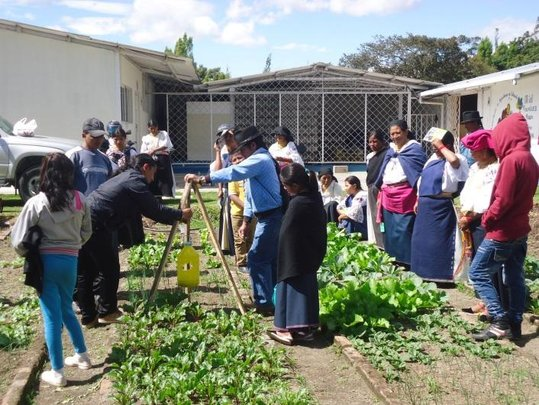 Families Learn Gardening Techniques