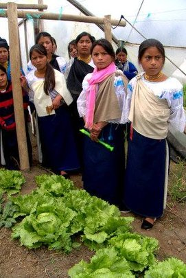 Learning to grow nutritious food changes lives.