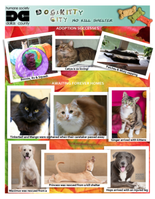 Humane Society Dallas County - 9-30-2015 Rpt