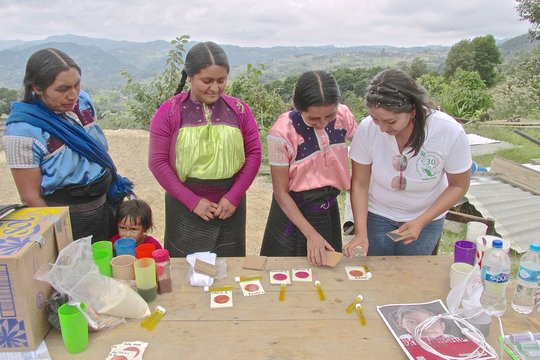 Clean Water for 300 families in Honduras