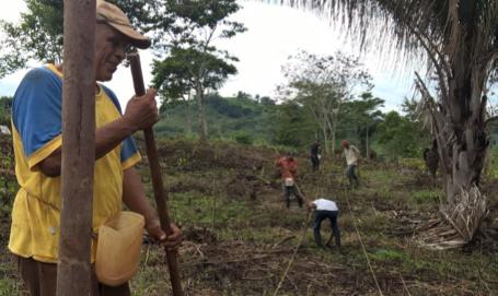 community members planting in demonstration plots
