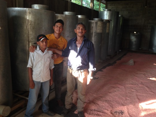 Isidro & sons stand amidst their treated seed corn