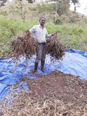 Coop leader, Isidro, holding bushels.