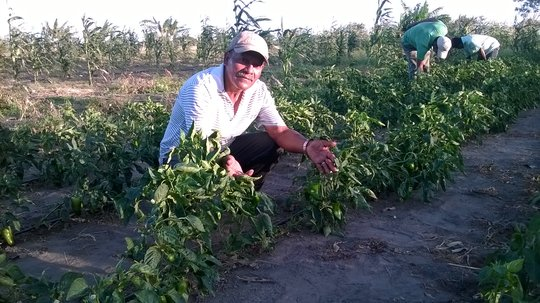 Teofilo with his drip irrigation system