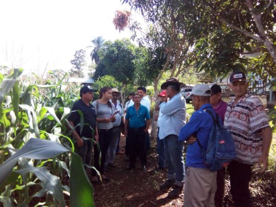 Introducing Double Row Corn Technology to Nicaragua's Farmers
