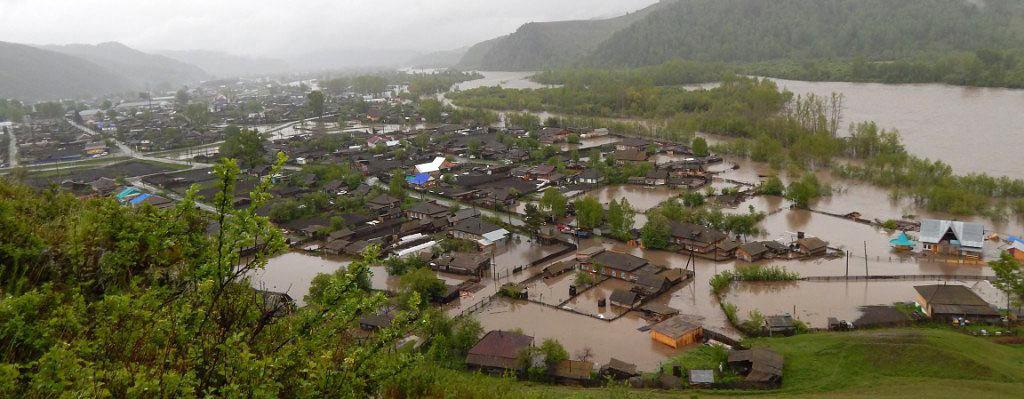 Compassion for Altai
