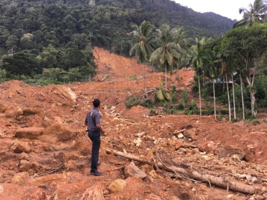 Aftermath of an extensive landslide