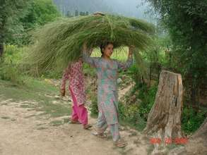 Girl Engaged in Farm work