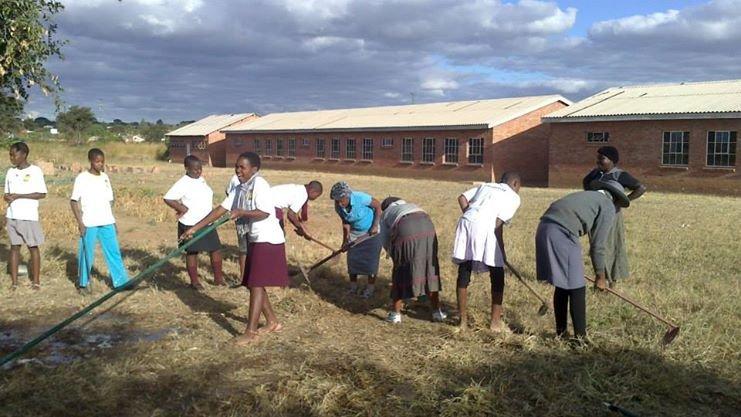 Maranatha students&beneficiaries clearing the land