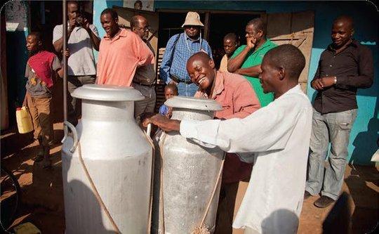 EADD II Milk Delivery