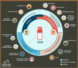 EADD Hub Model
